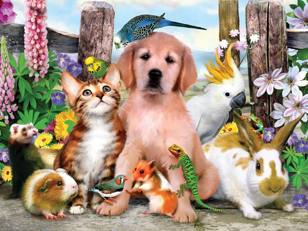 кто нибудь картинки для сайта про животных спиннинге